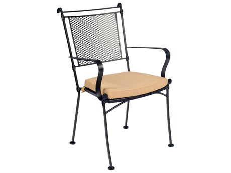 Woodard Bradford Mesh Wrought Iron Dining Arm Chair w/ Seat Cushion