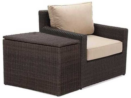 Winston Quick Ship Capri Woven Cushion 2 Piece Lounge Chair Set