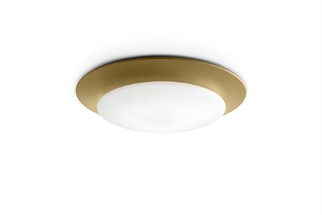 Carpyen Oslo Gold 21'' Wide LED Flush Mount Light CRPOSLOWALLGOLD