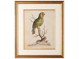 Gold Frame Edwards Parrots III