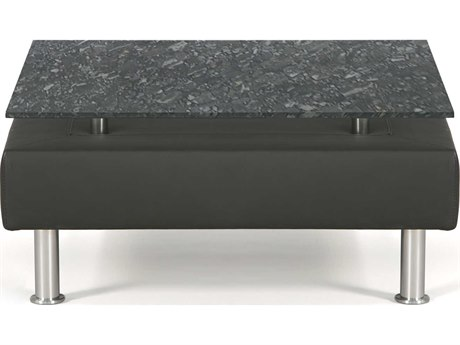 Dauphin Egbert 21'' Wide Square Coffee Table with Granite Top DAUEG8161GRN