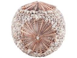 Elk Lighting Natural Sliced Shell Spiral Ball