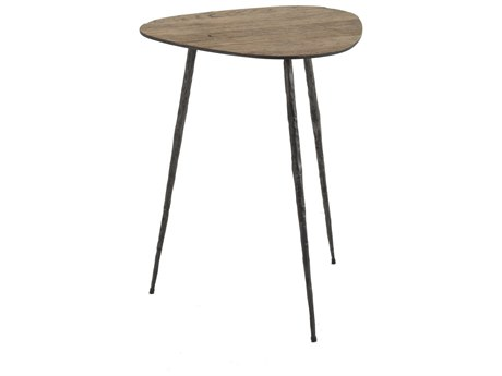 Gabby Jim Recycled Oak & Black Forged 16'' Wide End Table
