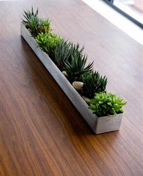 Gus* Modern Plant Stands