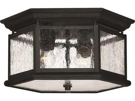 Hinkley Lighting Edgewater Black Two-Light Outdoor Ceiling Light HY1683BK