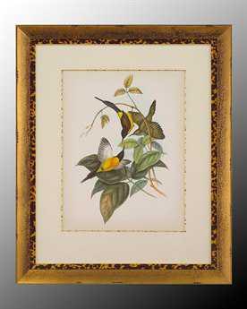 John Richard Animals Canvas Wall Art JRGRF5167B