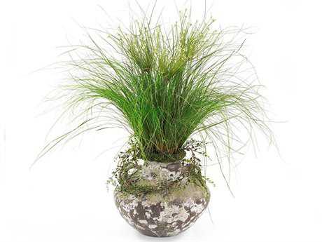 John Richard Allium Grass Floral Arrangement in Vase JRJRB2508