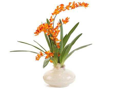 John Richard Florals Botanical JRJRB3750