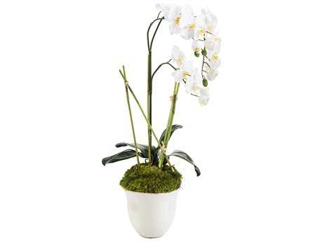 John Richard Monaco Structure Floral Arrangement JRJRB3754