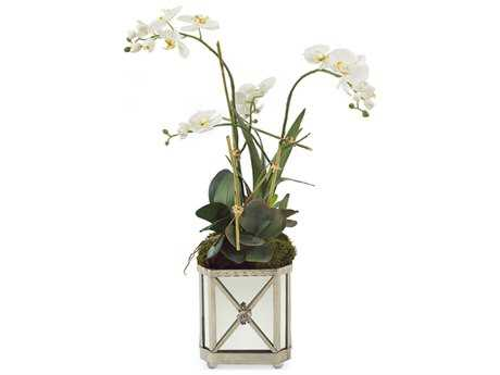 John Richard Silver Orchids Floral Arrangement in Vase JRJRB3212