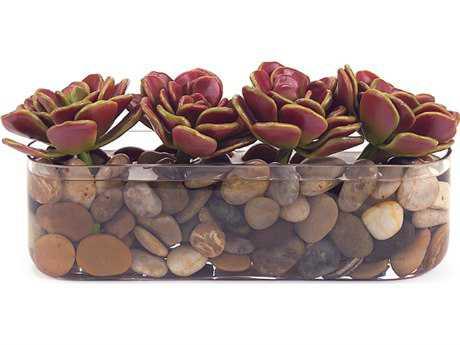 John Richard Succulent Row Floral Arrangement