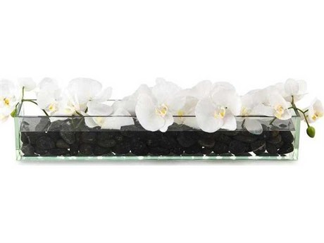 John Richard Domino White Phalaenopsis Floral Arrangement JRJRB3947W