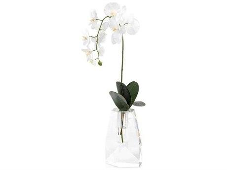 John Richard Crystal Orchid JRJRB4043W