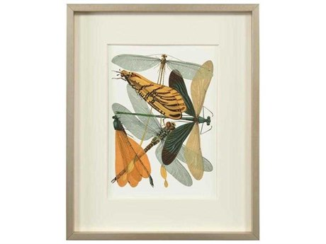 John Richard Insect Assemblage Ii JRGBG1572B