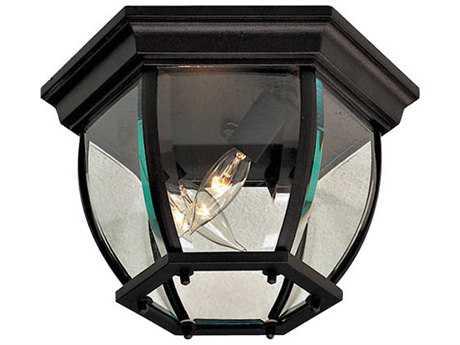 Minka Lavery Black Glass Outdoor Ceiling Light
