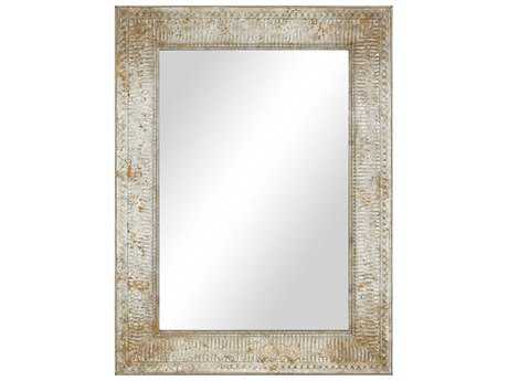 Paragon Discovery 35'' W x 47'' H Aged Silver Wall Mirror PAD9448
