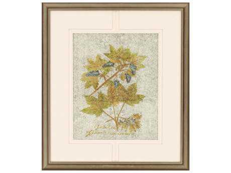 Paragon Kinder Harris Jardine Botanicals I Painting