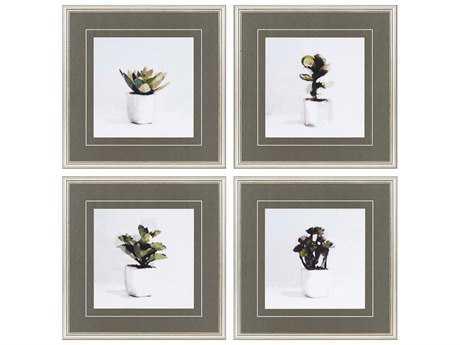 Paragon Sayilir Succulents Exclusive Giclee Painting (Four-Piece Set)