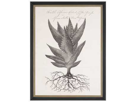 Paragon Thornton ''Thornton Succulents I'' Wall Art
