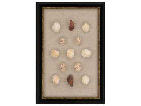 Paragon Unknown ''Shell Mix'' Wall Art PAD3759