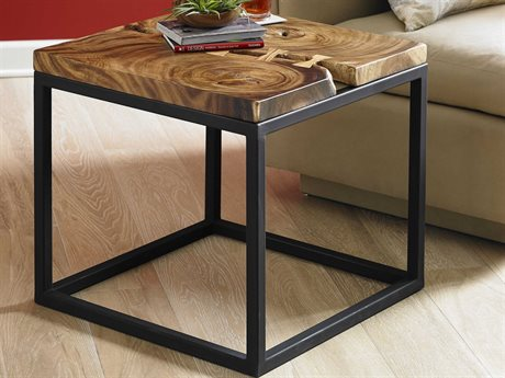 Phillips Collection Brown 24'' Wide Square End Table