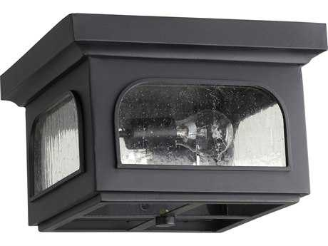Quorum International Fuller Noir Two-Light Outdoor Ceiling Light
