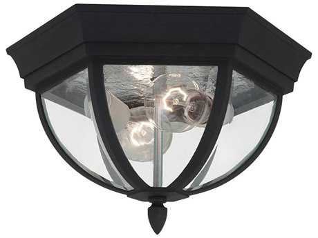 Sea Gull Lighting Bakersville Black 2 Glass LED Outdoor Ceiling Light