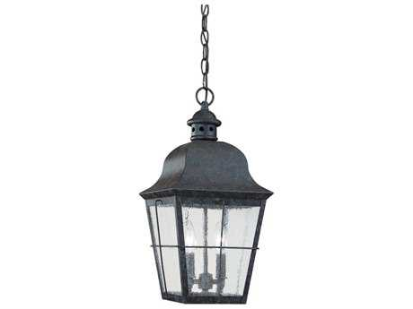 Sea Gull Lighting Chatham Oxidized Bronze Two-Light Outdoor Hanging Light SGL606246