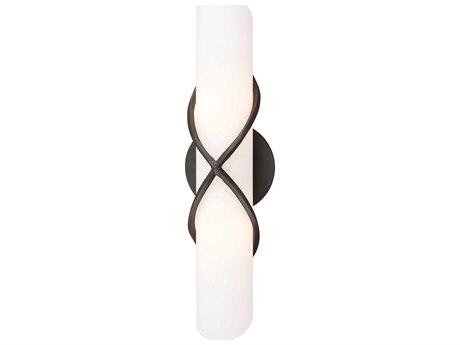 Troy Lighting Roxbury Graphite Two-Light 18'' Wide Vanity Light TLB1402GR