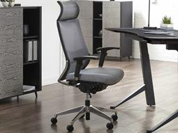Unique Furniture Office Chairs Category
