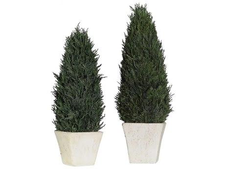 Uttermost Cypress Botanical UT60140