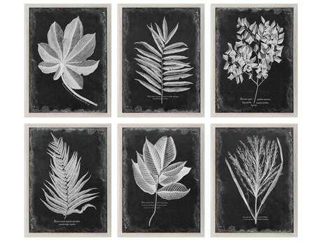 Uttermost Foliage Framed Prints (Six Piece Set) UT33671