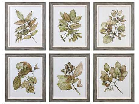 Uttermost Grace Feyock Seedlings Framed Prints (Set of Six)