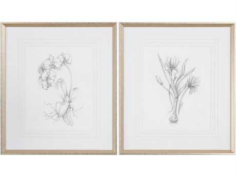 Uttermost Grace Feyock Botanical Sketches Framed Prints (Set of Two) UT33649