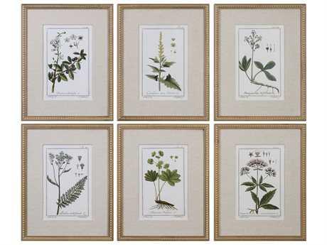 Uttermost Grace Feyock Green Floral Botanical Study Prints (Set of Six) UT33651