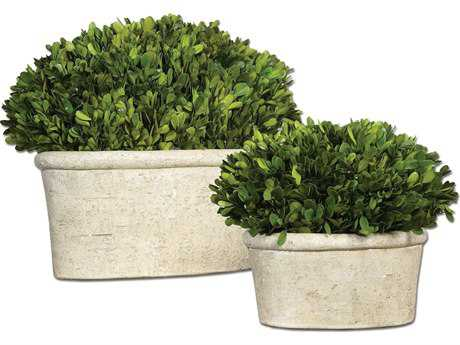 Uttermost Oval Domes Preserved Boxwood (Set of 2) UT60107