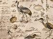 Birdsong-Seamist