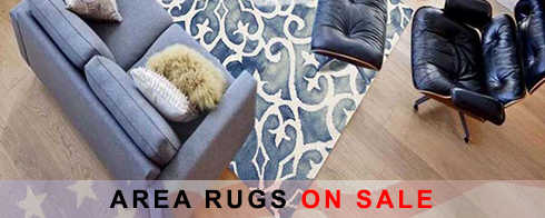 Area Rugs President's Day Sale